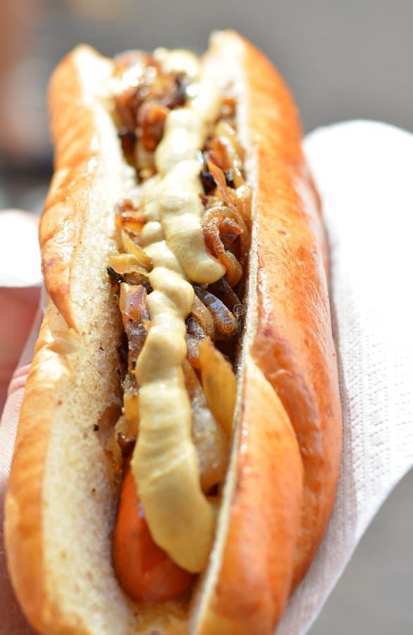 Feinschmecker gegrillter Hotdog von Mangalica-Schweinen lizenzfreies stockbild