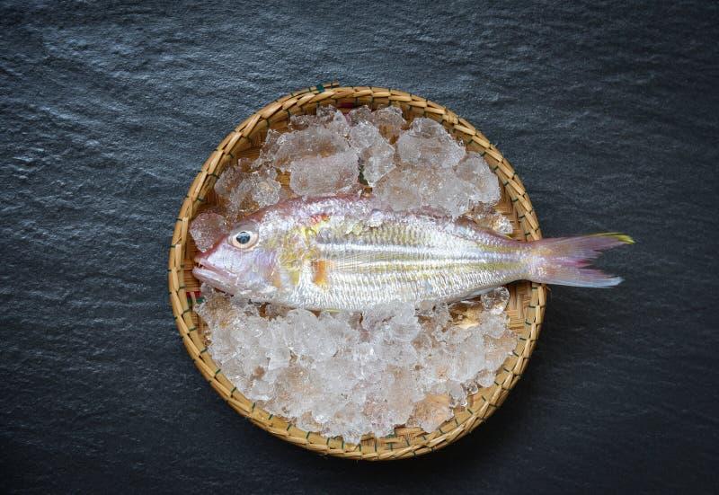 Feinschmeckerische frische rohe Fische des MeeresfrüchteLasche-Ozeans auf Eiskorb auf dem Stein stockbild