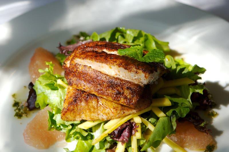 Feinschmeckerischer Fisch- und Zitrusfruchtsalat lizenzfreies stockbild