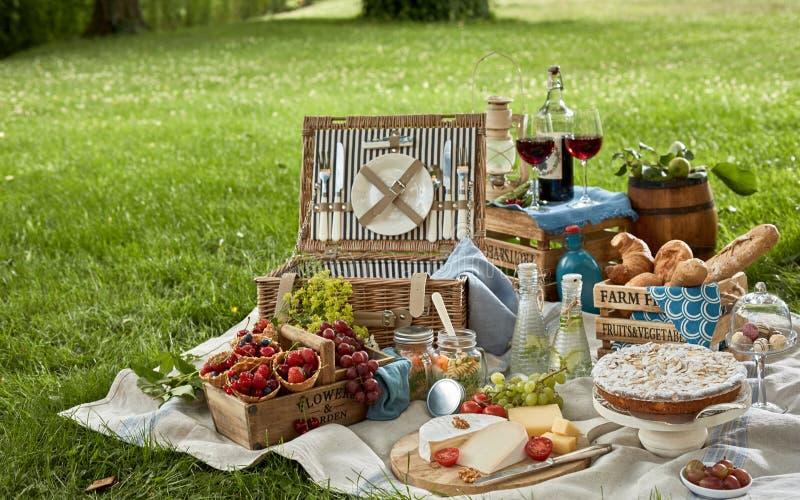 Feinschmeckerisches Picknickmittagessen in einem Park stockbilder