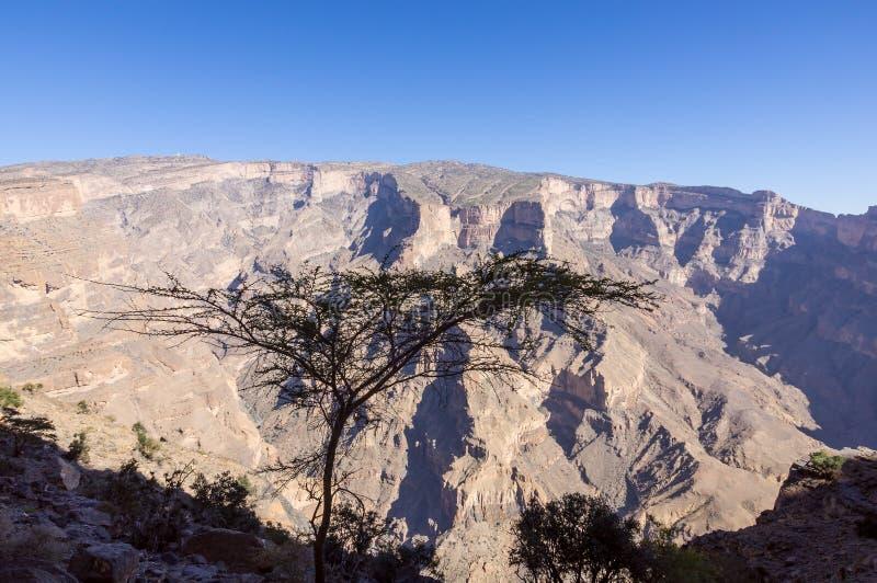 Feintes de Jebel - Sultanat d'Oman image libre de droits