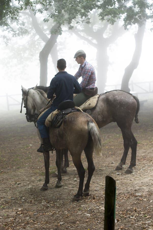 Feira de cavalo foto de stock royalty free