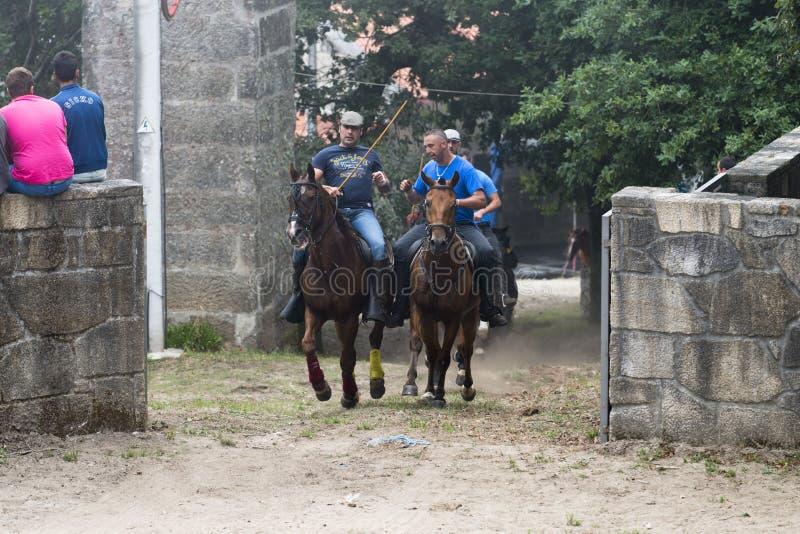 Feira de cavalo fotos de stock