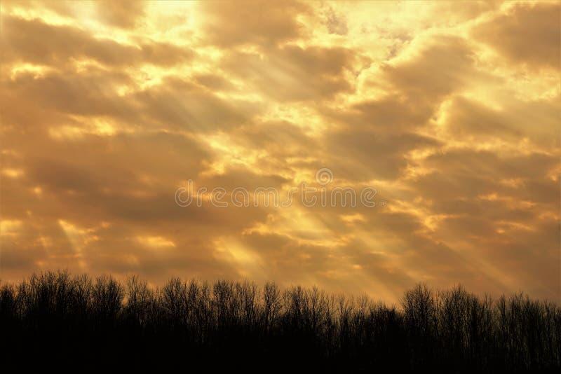 Feixes da luz solar gloriosa imagens de stock royalty free