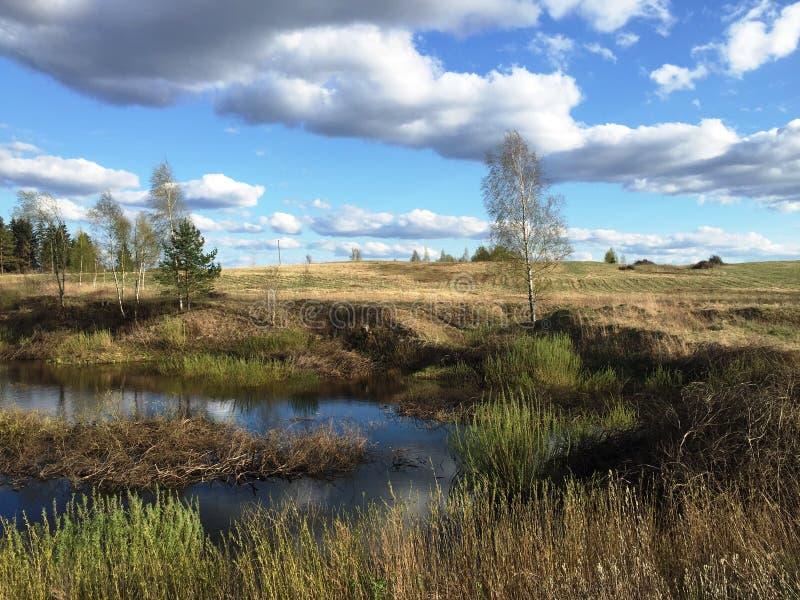 Feld in den Wolken stockbild