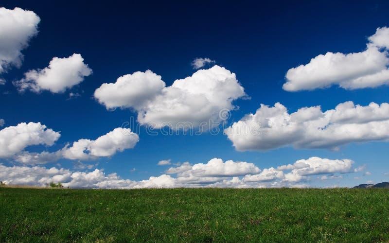 Feld der Wolken lizenzfreie stockfotos