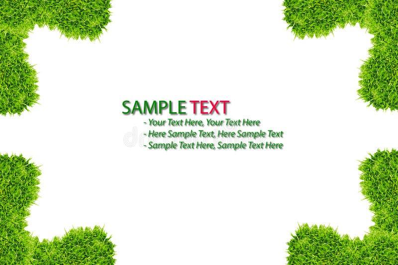 Feld des grünen Grases getrennt lizenzfreie abbildung