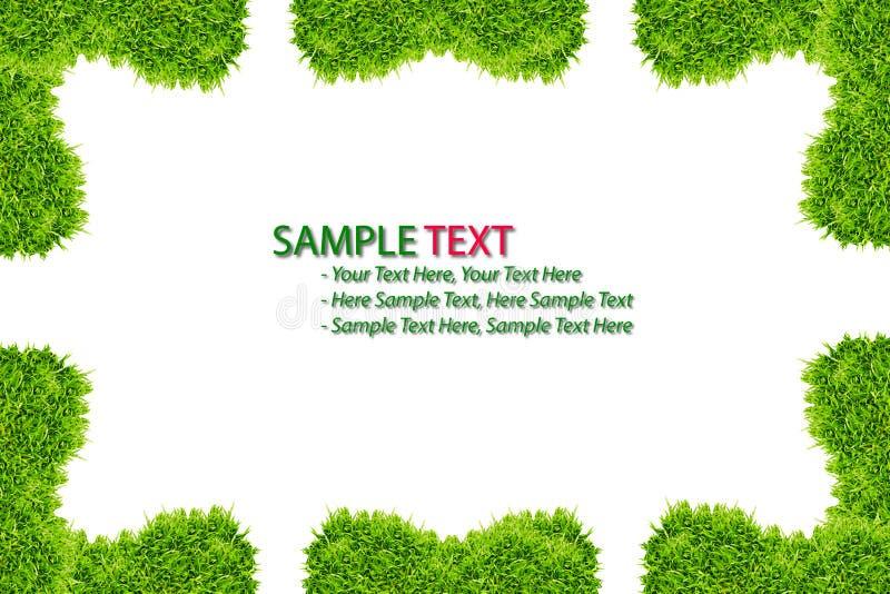 Feld des grünen Grases getrennt stock abbildung