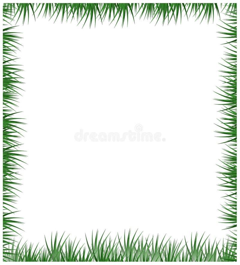 Feld des grünen Grases getrennt auf einem weißen Hintergrund lizenzfreie abbildung