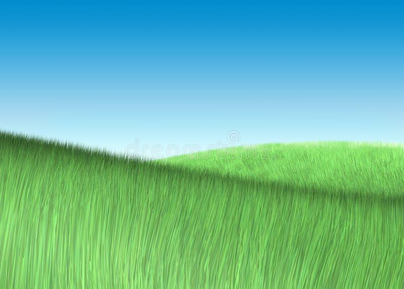 Feld des grünen Grases unter Himmel lizenzfreie abbildung