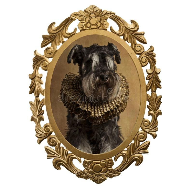 Feld eines Hundes im Renaissancestil lizenzfreie abbildung