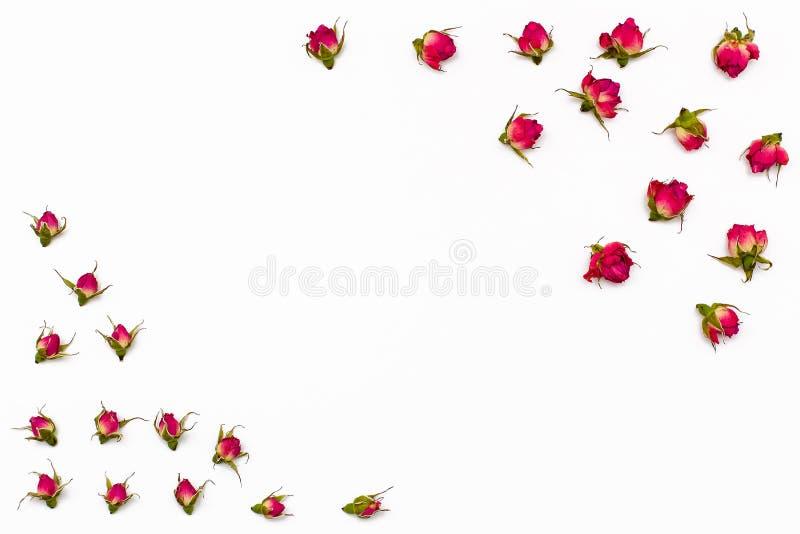 Feld für Text von den Trockenblumen von stieg auf weißen Hintergrund stockfoto