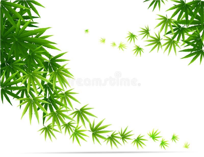 Feld gebildet mit den Hanfmarihuanablättern lokalisiert auf Weiß lizenzfreie abbildung