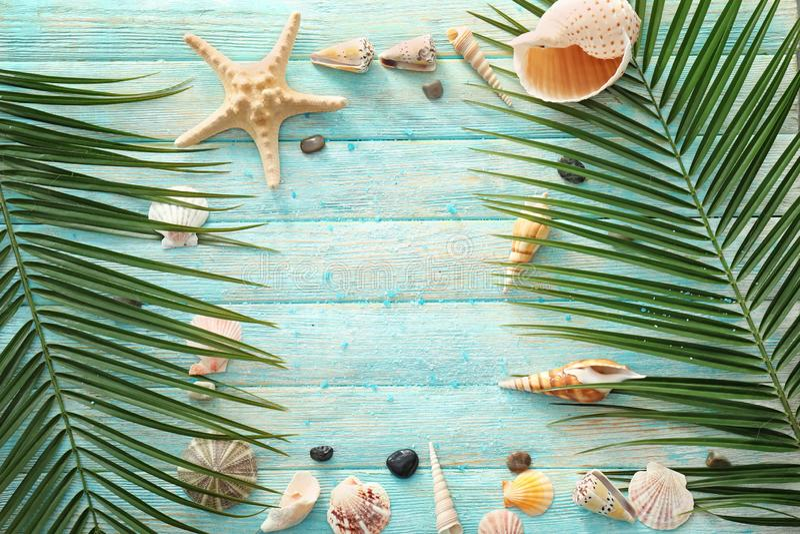 Feld gemacht von den verschiedenen Seeoberteilen und -palmblättern auf Farbhölzernem Hintergrund lizenzfreie stockfotos