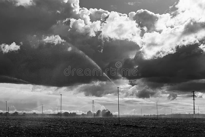 Feld mit Berieselungsanlagen bewölkter Tag lizenzfreies stockfoto