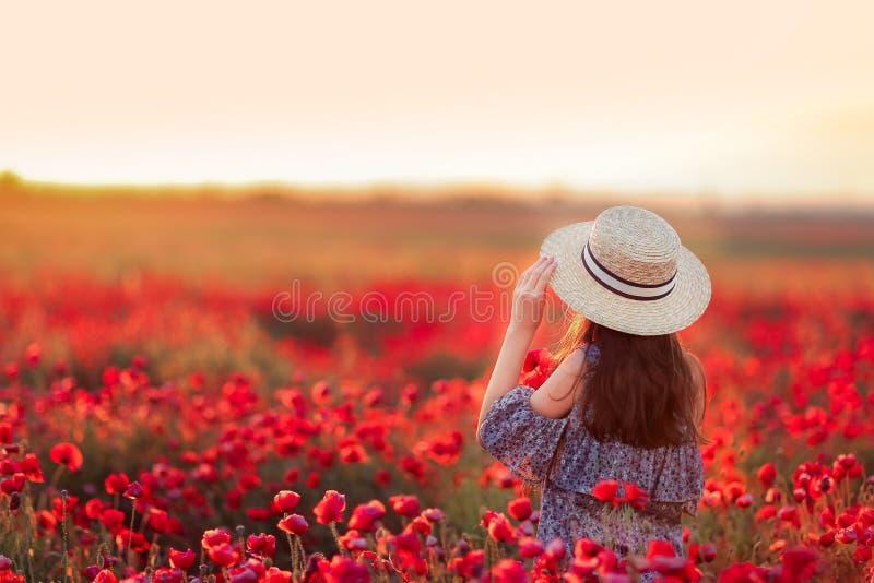 Feld mit Mohnblumen stockfotos