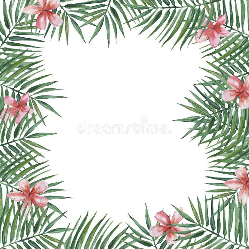 Feld mit Palmenbl?ttern und rosa Plumeriablumen Dekoratives Bild einer Flugwesenschwalbe ein Blatt Papier in seinem Schnabel stock abbildung