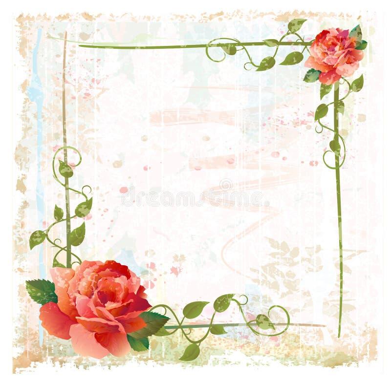 Feld mit roten Rosen und Efeu stock abbildung