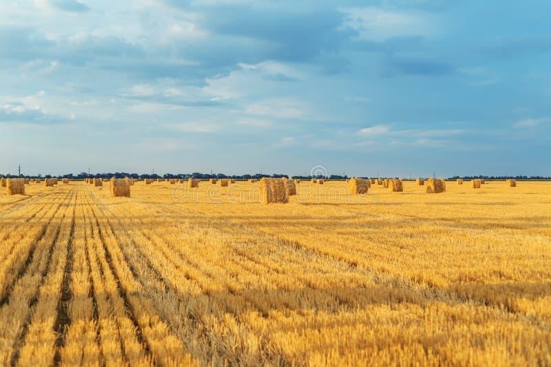 Feld mit Strohballen nach Ernte mit bewölktem Himmel in Sonnenuntergang t lizenzfreie stockfotos