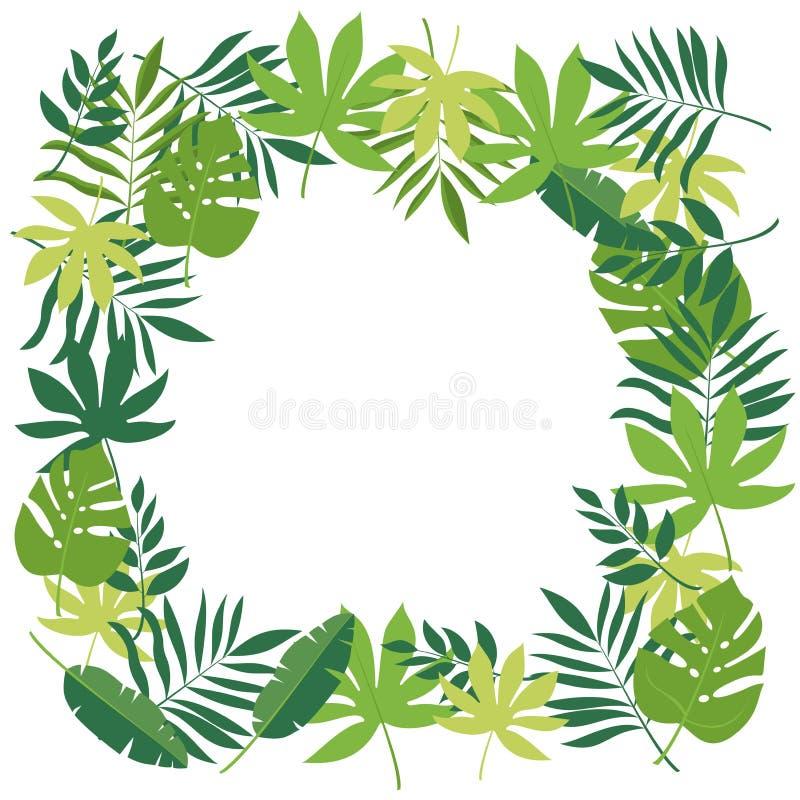 Feld mit tropischen Blättern vektor abbildung