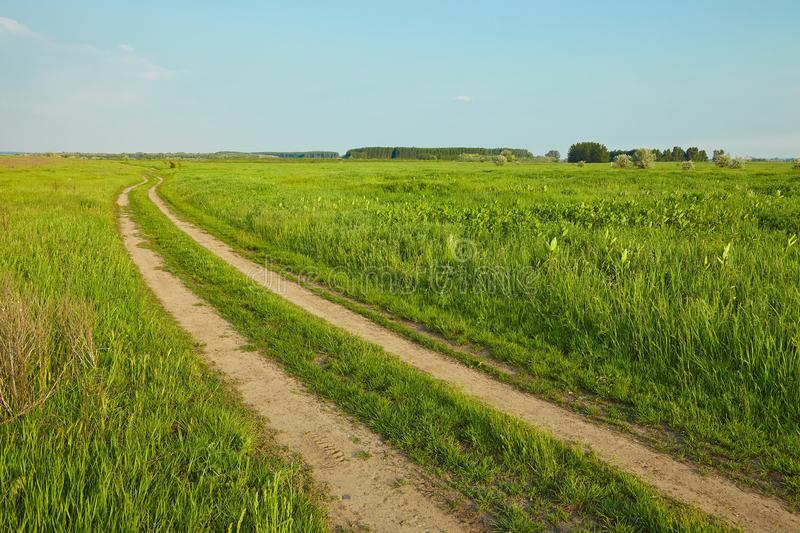 Feld mit Weg lizenzfreie stockfotografie