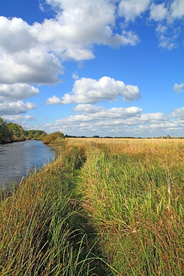 Feld nahe Fluss lizenzfreies stockfoto