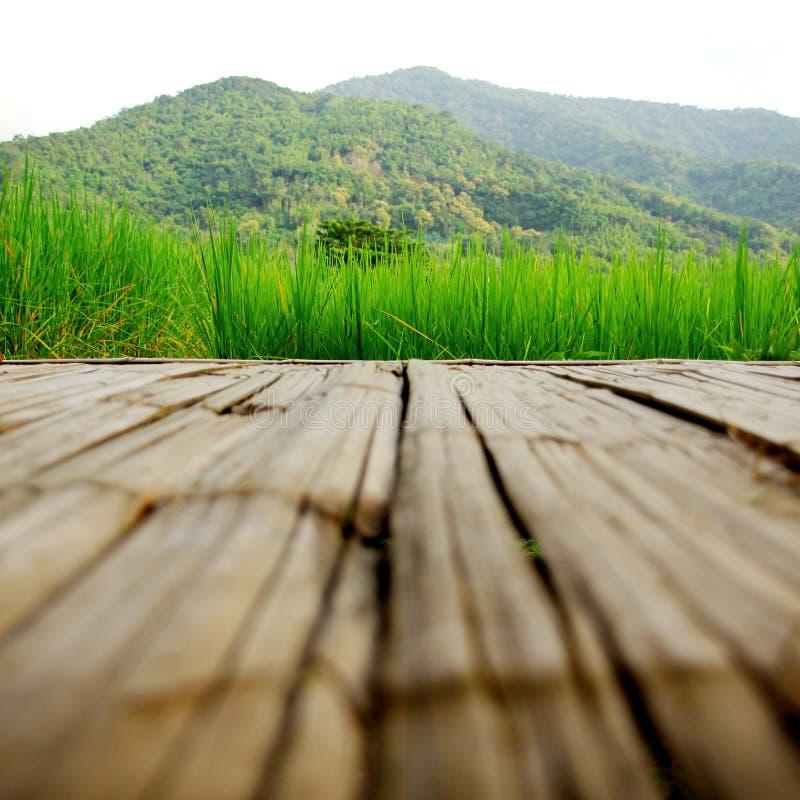 Feld und Berg lizenzfreie stockbilder