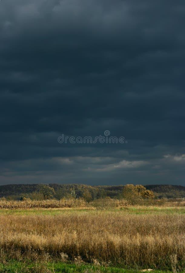 Feld Und Stürmischer Himmel Lizenzfreie Stockfotografie