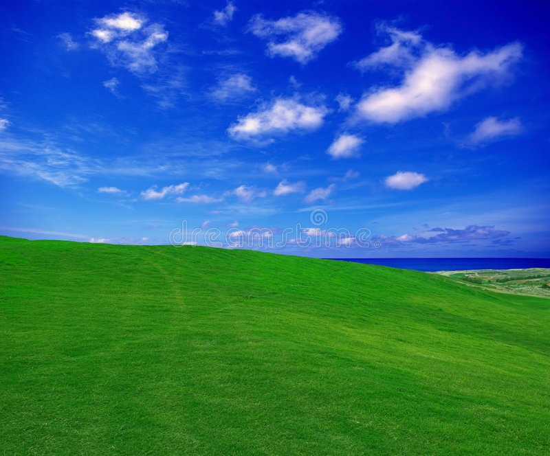 Feld und Wolken stockbild