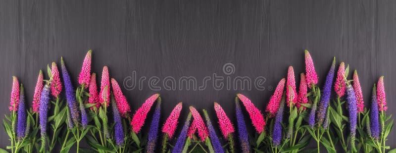Feld von Blumen, schwarze Bretter des Hintergrundes stockbilder