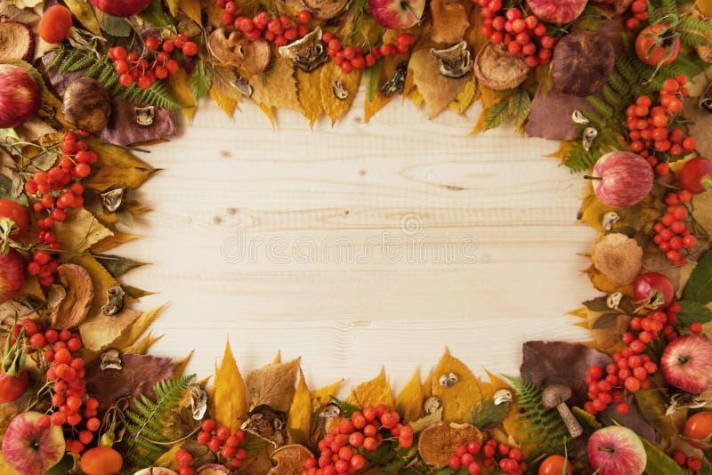 Feld von den trockenen bunten Herbstlaub-, trockenen und frischenpilzen, frische Hagebutten, Vogelbeere, Äpfel auf dem hölzernen  stockfotos