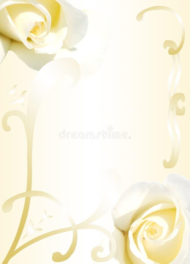 Feld von den weißen Rosen vektor abbildung