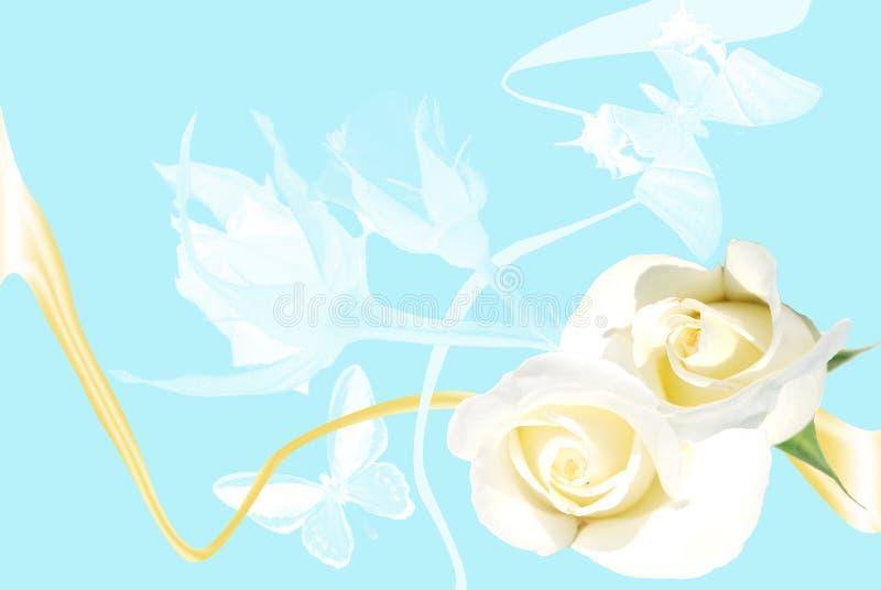 Feld von den weißen Rosen auf blauem Hintergrund stockfotografie