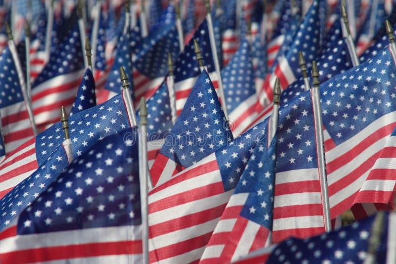 Feld von Flaggen stockfotografie