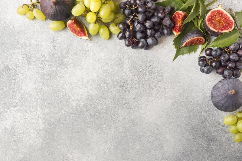 Feld von frischen Herbstfrüchten Trauben schwarz und grün, Feigen und Blätter auf einer grauen Tabelle mit Kopienraum lizenzfreies stockbild