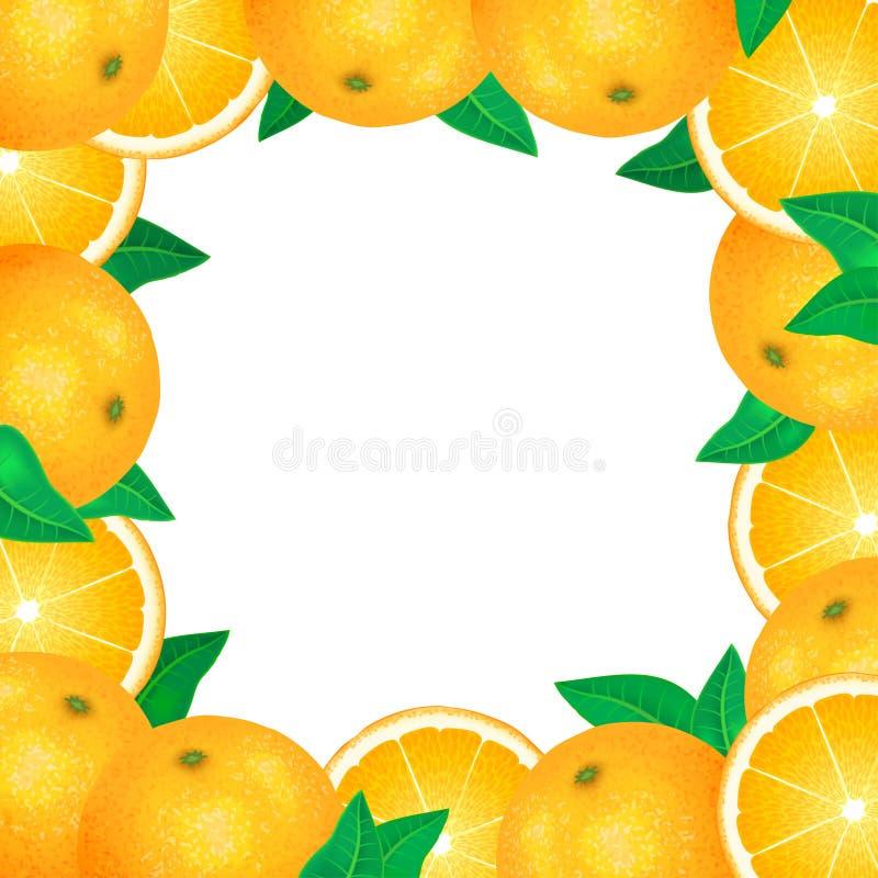 Feld von frischen Orangen Natürliche Biofrüchte, gesundes biologisches Lebensmittel stock abbildung