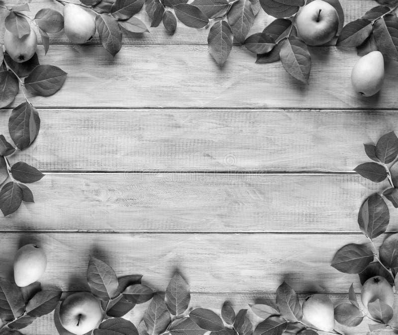 Feld von grünen Blättern, Äpfel und Birnen auf hölzernen Weinlesebrettern Platz für Text stockfotografie