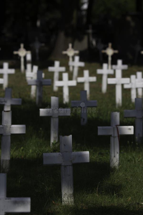 Feld von Kreuzen stockbilder