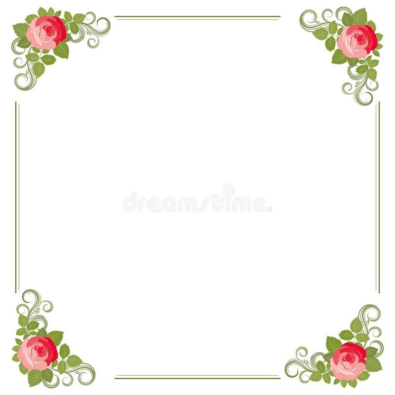 Feld von Rose mit Blättern. lizenzfreie abbildung
