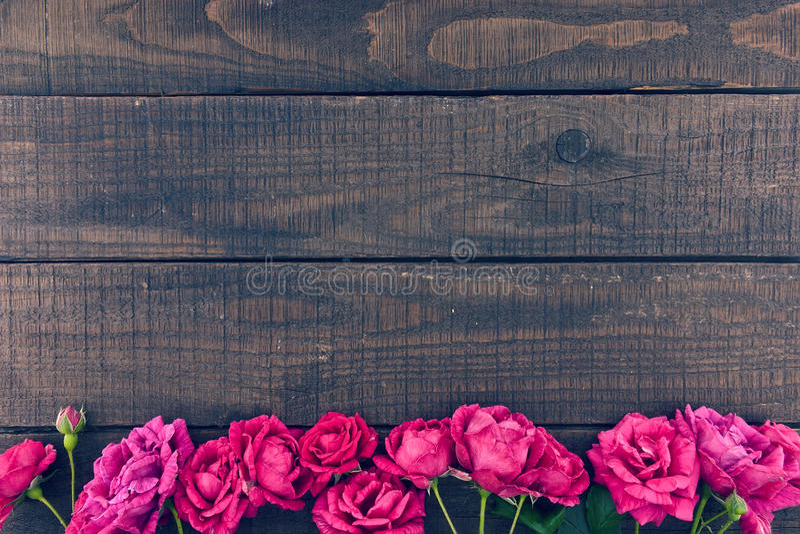 Feld von Rosen auf dunklem rustikalem hölzernem Hintergrund Gerade ein geregnet lizenzfreie stockbilder