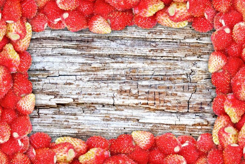 Feld von Walderdbeeren auf der Hintergrundbeschaffenheit des Holzes. stockbild