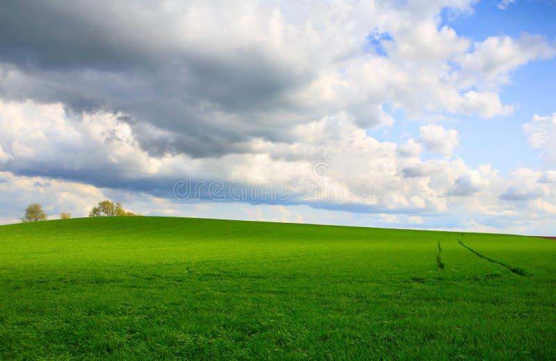 Feld in Wisconsin stockfoto