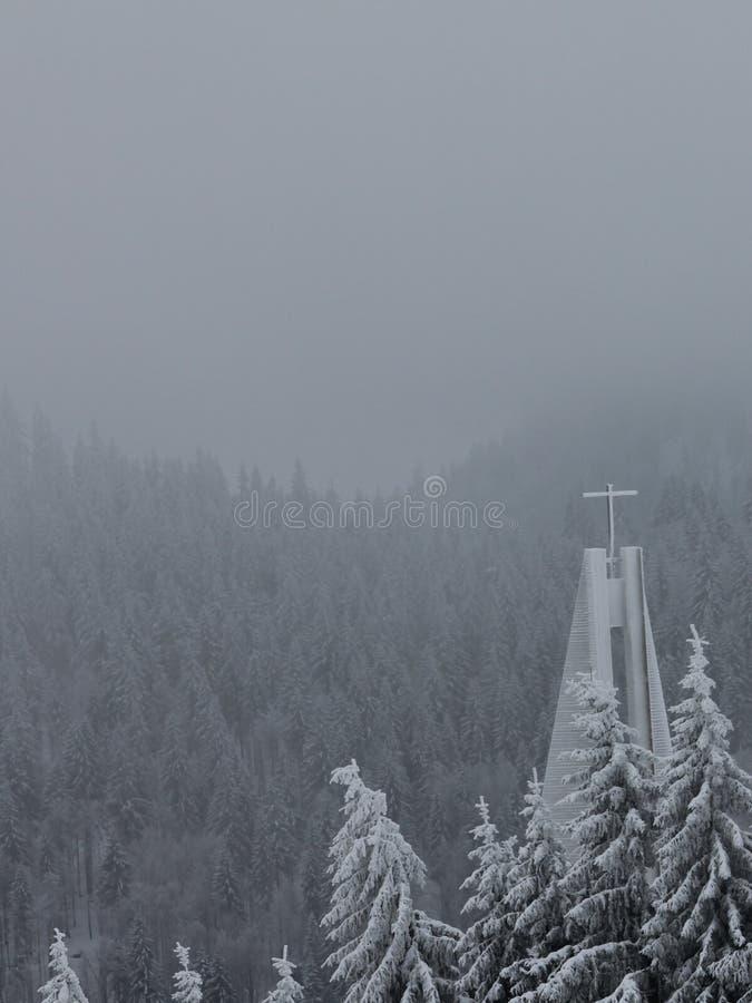 Feldberg, bosque negro - Alemania