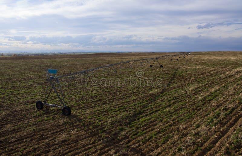 Feldberieselungsanlage auf Feld in Colorado stockbild