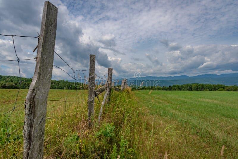 Felder in der hügeligen Landschaft von Charlevoix, Quebec lizenzfreies stockbild