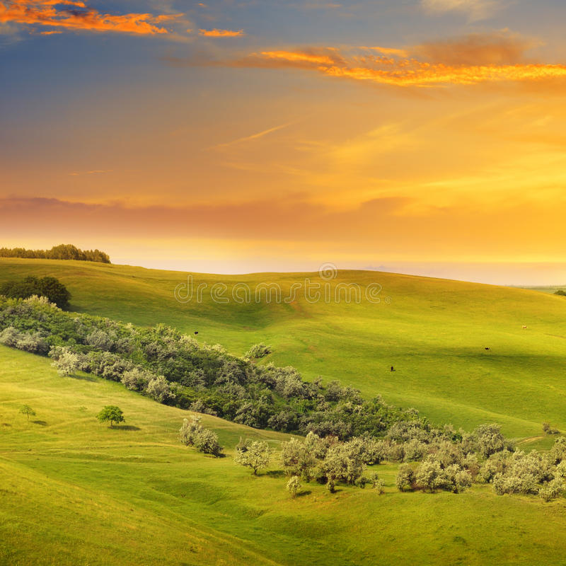 Felder, Hügel und Sonnenaufgang lizenzfreies stockbild