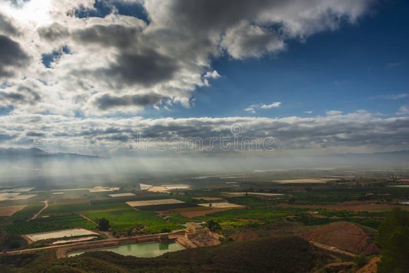 Felder kultiviert in Murcia, Spanien II stockbilder