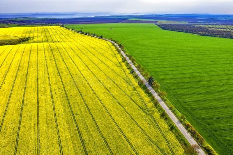Felder mit Spuren eines Traktors auf dem landwirtschaftlichen Feldsäen lizenzfreies stockfoto