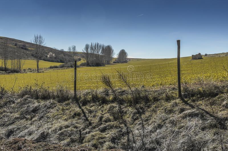 Felder von ländlichem Spanien nahe Ayllon segovia stockfotos