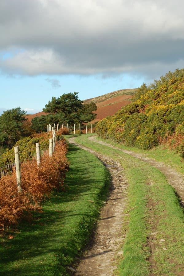 Feldweg im Herbst stockfotos